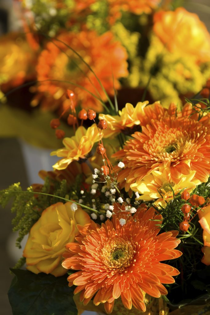 Autumn Flower Display - iStock_000005407915_Medium