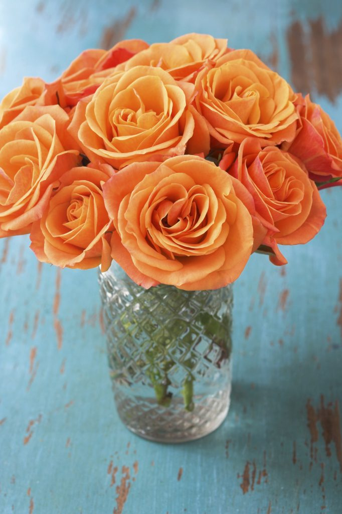 Orange Roses in Vase - iStock_000004445762_Large