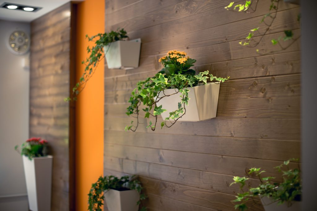 flowers hanging on an office wall
