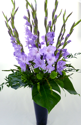 Gladioli Purple Vase Jungle World